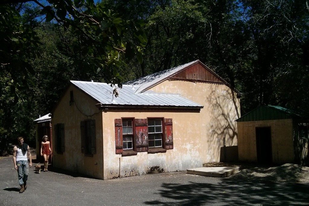pulga-school