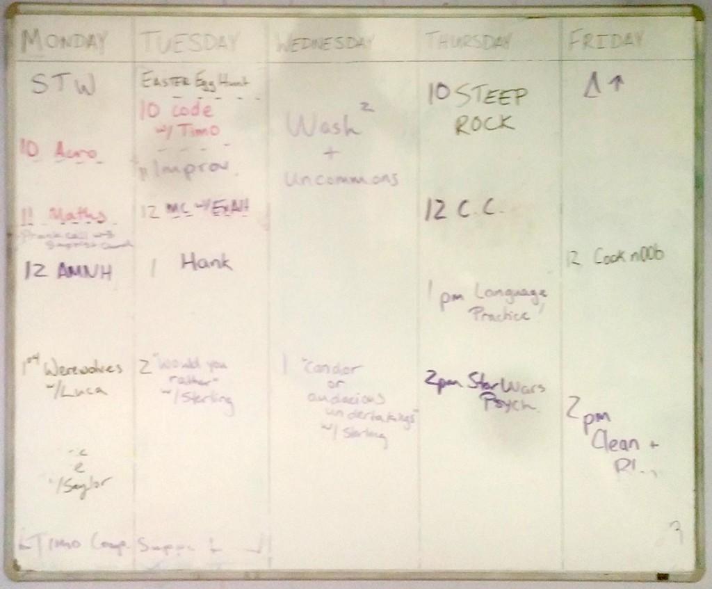 Set the week at ALC NYC